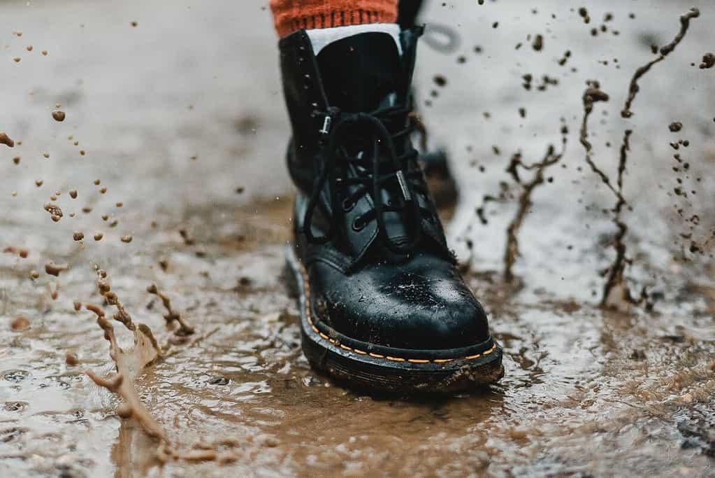 floormats clean shoes
